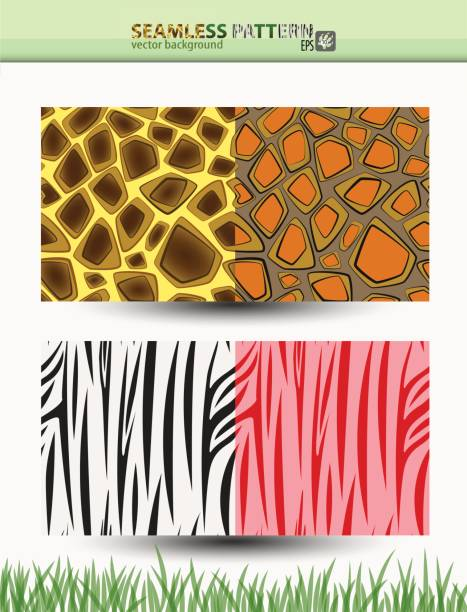 無縫向量花紋的長頸鹿和斑馬的背景和包裝向量藝術插圖