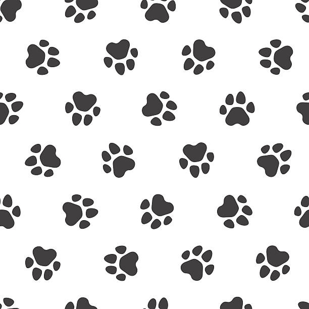Seamless vector pattern - traces of paws vector art illustration