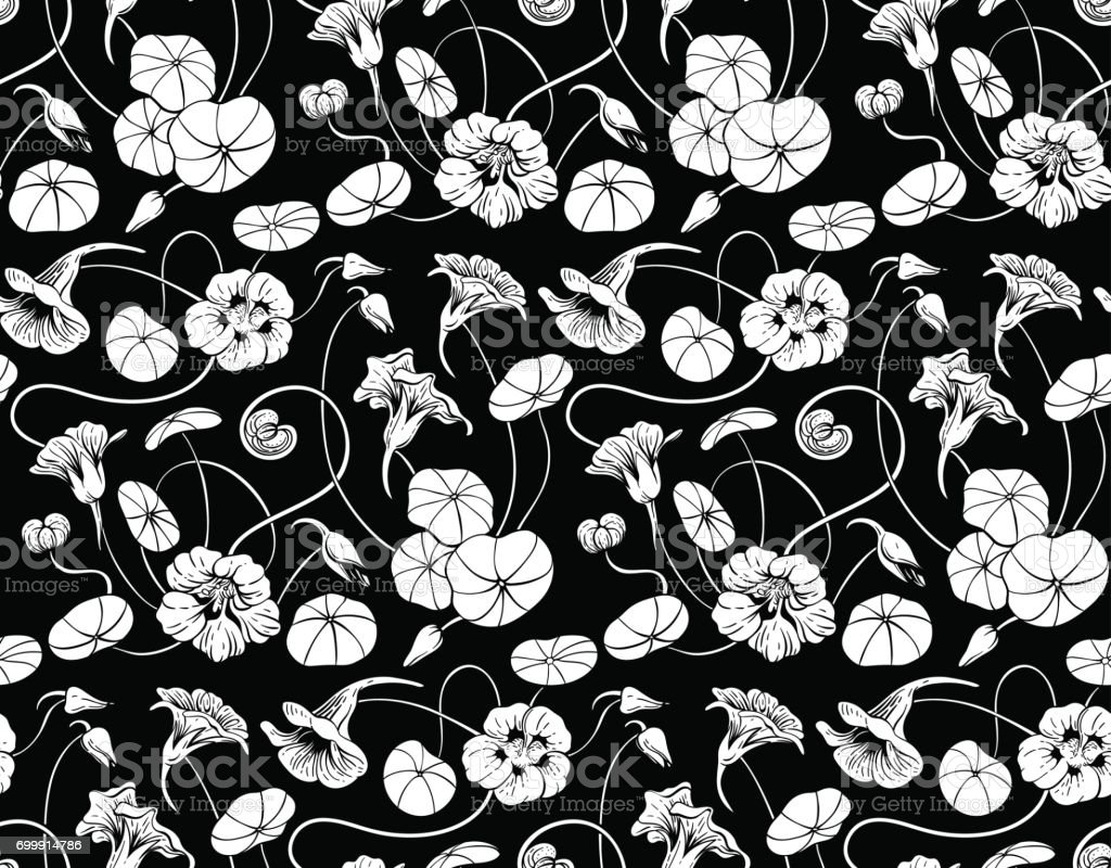 Seamless vector pattern with  nasturtium flowers and leaves on black background royalty-free seamless vector pattern with nasturtium flowers and leaves on black background stock illustration - download image now
