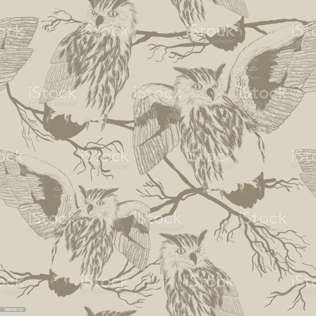 seamless vector pattern with owl seamless vector pattern with owl — стоковая векторная графика и другие изображения на тему owlet Стоковая фотография