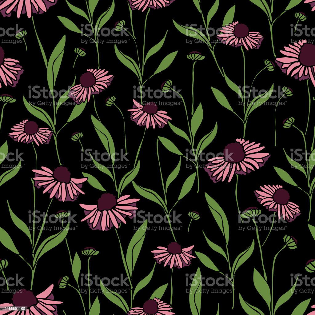 Seamless Vector Pattern With Pink Daisys On Black Background
