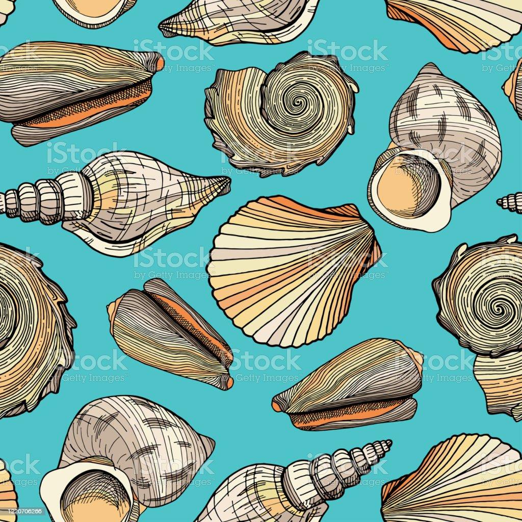 貝殻を持つシームレスなベクターパターン海洋水中テクスチャ青い水の背景にカラフルな航海シェルを描いた手描きパッケージ壁紙織物織物はがきバナー用のデザイン イラストレーションのベクターアート素材や画像を多数ご用意 Istock