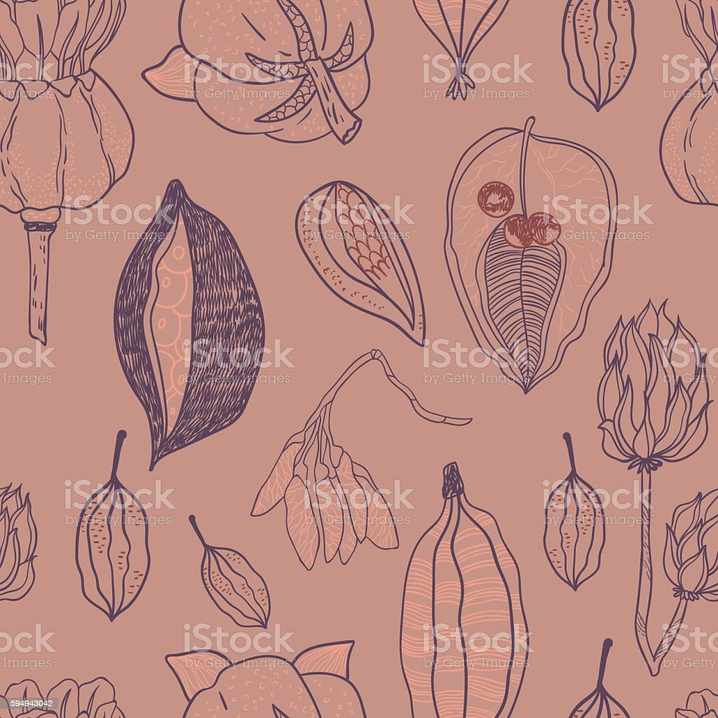 Seamless vector pattern with seeds and seed pods vector art illustration