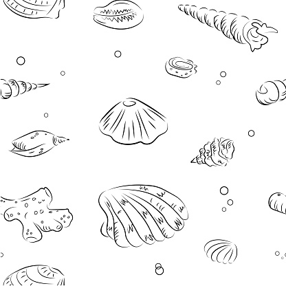 Seamless vector pattern with shells and corals