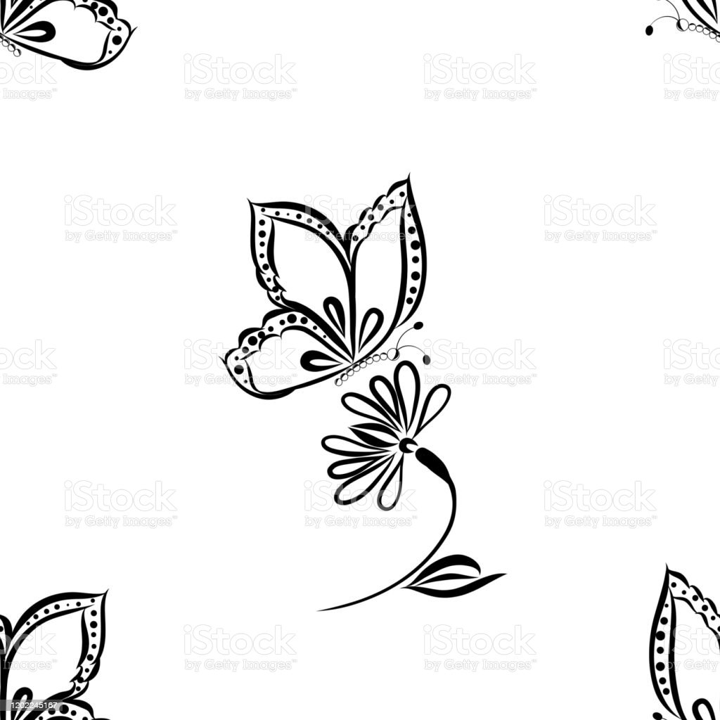 Seamless Wallpaper Black And White Background Butterfly Is Flying Stock Illustration Download Image Now Istock