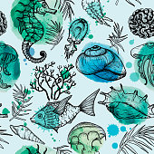 Seamless watercolor pattern with sketch of sea organisms. Hand Drawn vector background