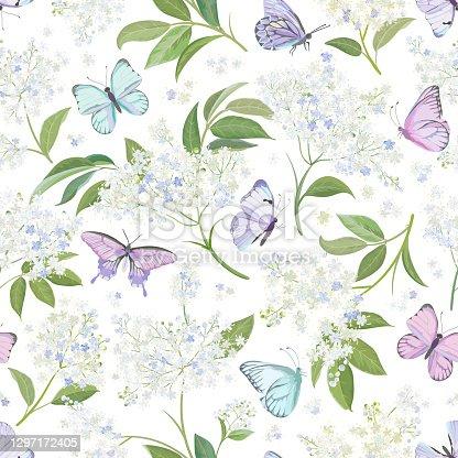 istock Seamless watercolor white elderberry floral background. Spring elderflower and butterflies pattern template vector. Summer flowers wedding design illustration 1297172405