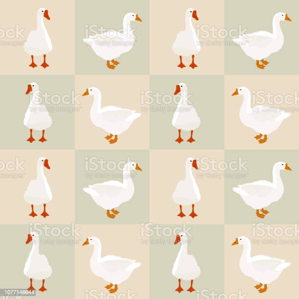Seamless white goose pattern on squares vector eps 10 vector id1077146644?b=1&k=6&m=1077146644&s=612x612&h=htpqysgrxjaqz8gox7iv6u gykpktxyerlfiul5djzi=