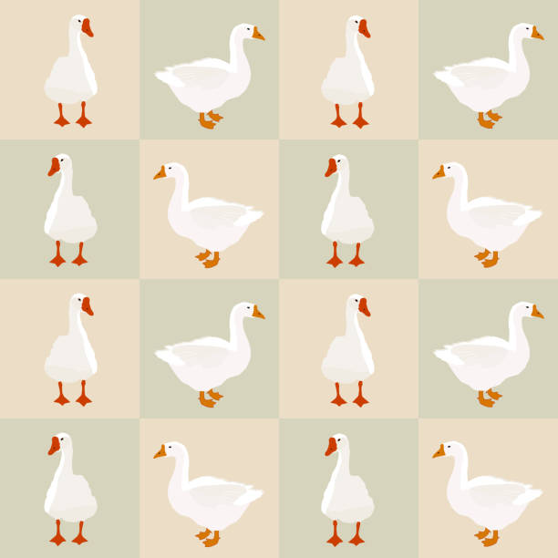 seamless white goose pattern on squares, vector eps 10 - duck stock illustrations