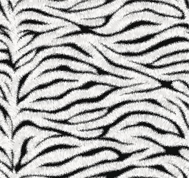 ilustrações, clipart, desenhos animados e ícones de sem costura padrão de pele de tigre branco - texturas de pelo de animal