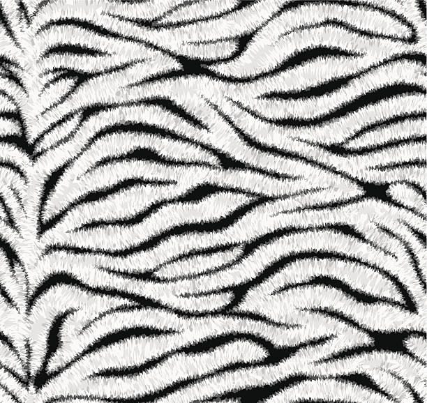 seamless white tiger skin pattern - fur texture stock illustrations, clip art, cartoons, & icons