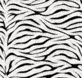 Seamless white tiger skin pattern
