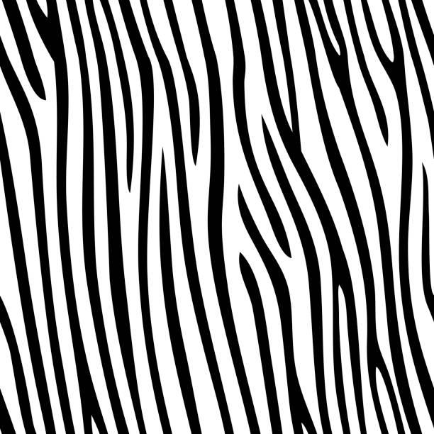 ilustrações de stock, clip art, desenhos animados e ícones de seamless zebra skin pattern - padrões zebra