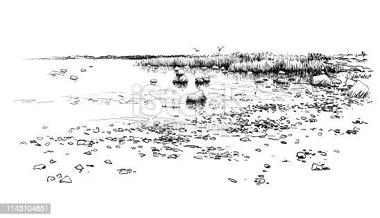 Seascape drawing, sketch. Hand drawn coast, stones, water, beach horizon