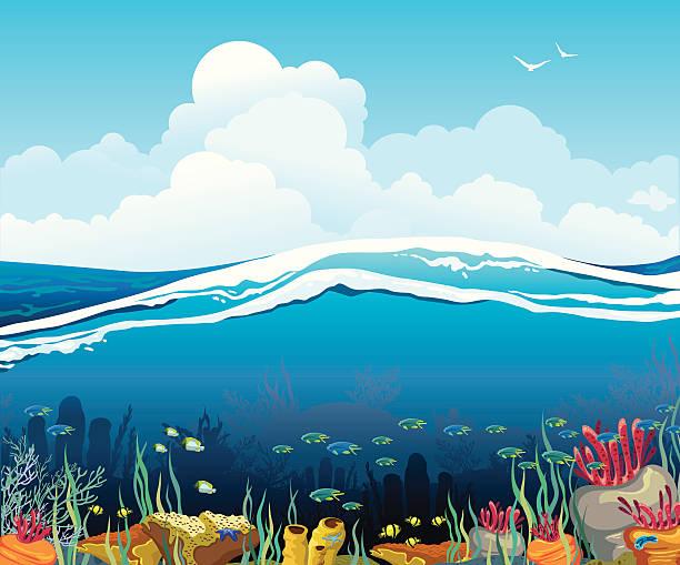 stockillustraties, clipart, cartoons en iconen met seascape with underwater creatures and  cloudy sky - ocean under water