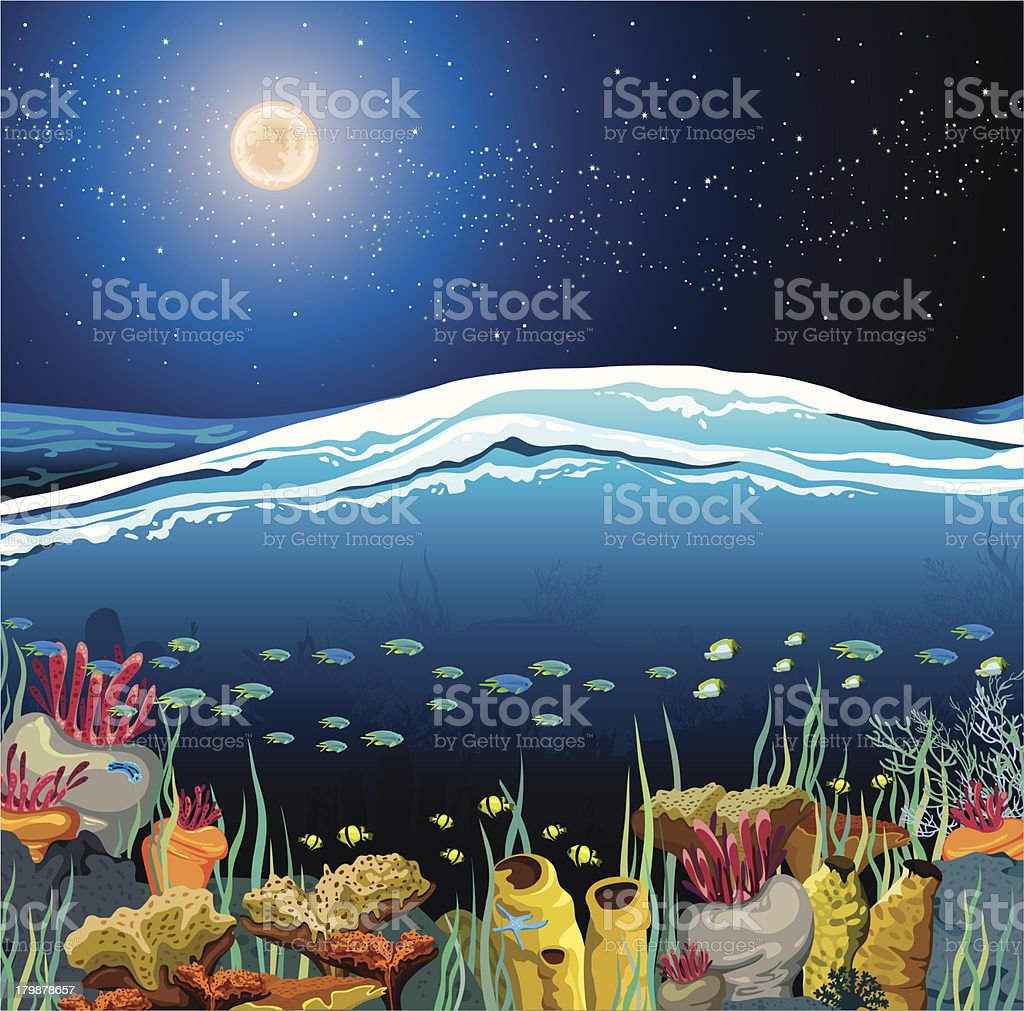 Seascape with underwater creatures and night sky royalty-free stock vector art