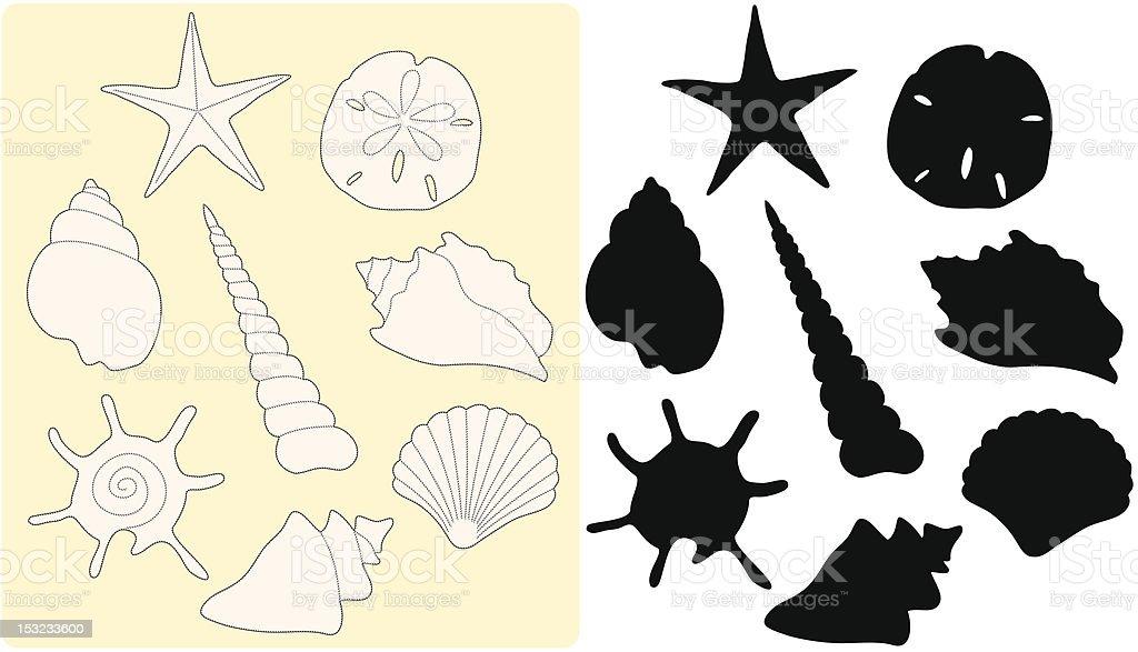 Ilustración de Dibujo Concha De Mar y más banco de imágenes de ...