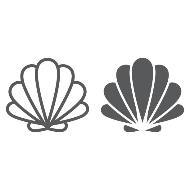 Seashell line and glyph icon, animal and underwater, shell sign vector graphics, a linear pattern on a white background, eps 10. Seashell line and glyph icon, animal and underwater, shell sign vector graphics, a linear pattern on a white background, eps 10. animal shell stock illustrations