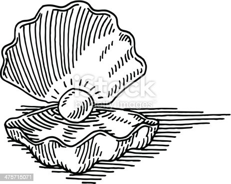 Hand-drawn vector drawing of an open Seashell with a Pearl in it. Black-and-White sketch on a transparent background (.eps-file). Included files are EPS (v10) and Hi-Res JPG.