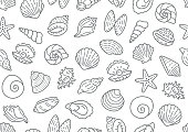 Seashell seamless pattern. Vector background included line icons as ocean sea shells, scallop, starfish, clam, oyster, nautical texture for fabric. Black and white color.