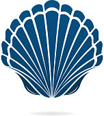 istock seashell 1201007211