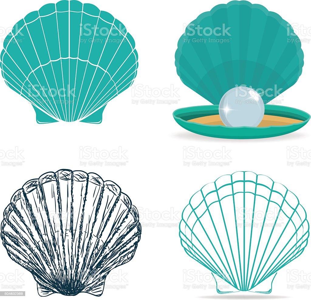 Seashell vector art illustration