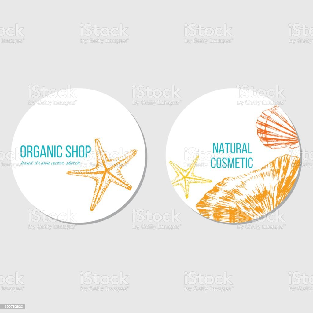 seashells starfish hand drawn vector color sketch isolated on