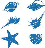 Set of 6 seashells silhouettes, stencils