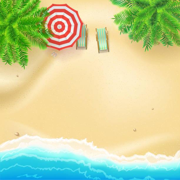 illustrations, cliparts, dessins animés et icônes de bord de mer et plage de sable fin, plate poser. vue de dessus de la plage de sable fin avec des accessoires d'été. plage tropicale, palmiers, vagues de surf, parasol, chaises longues. fond de vecteur réaliste des meilleurs moments de l'été - transat