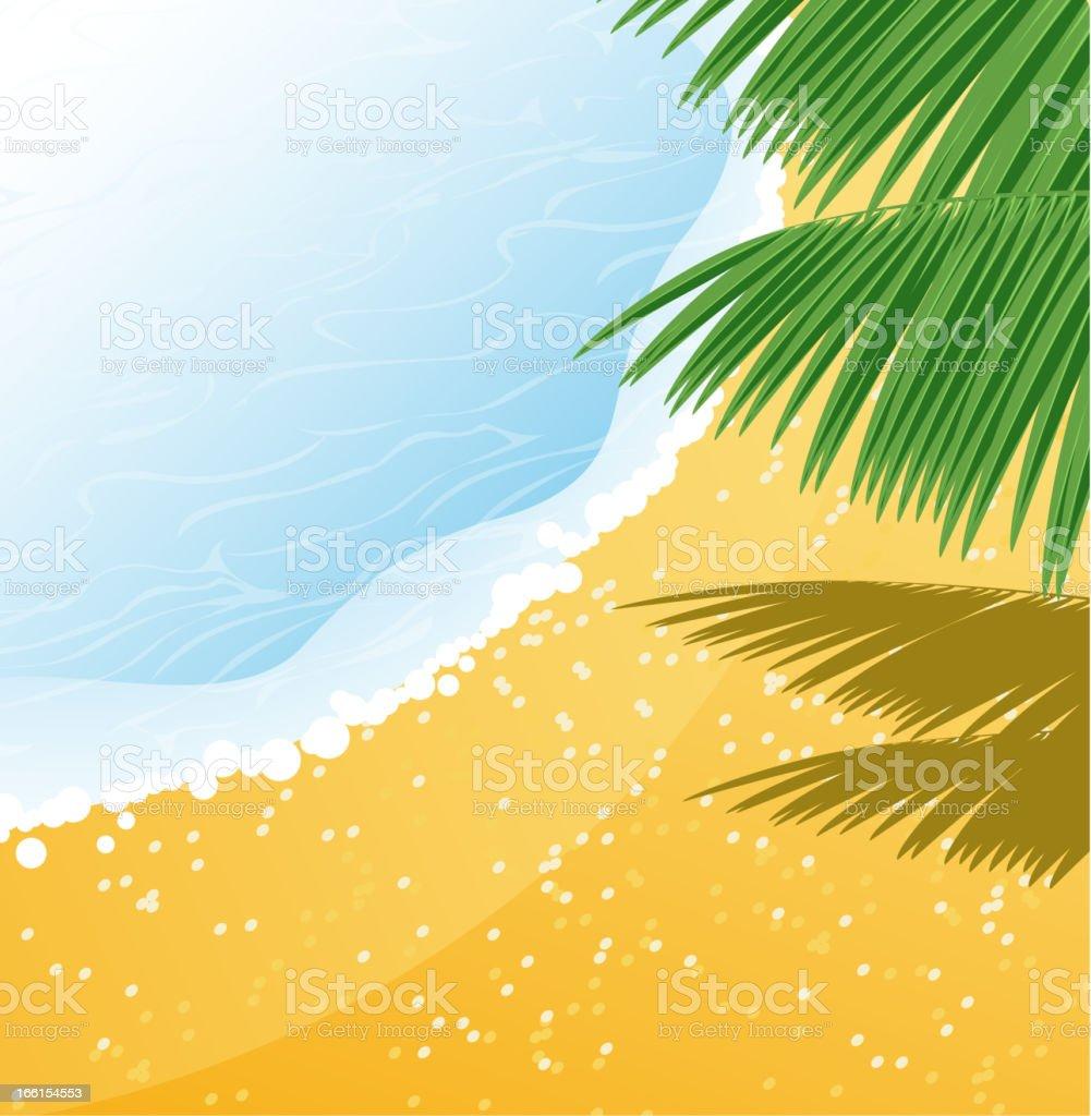 Seashore vector art illustration