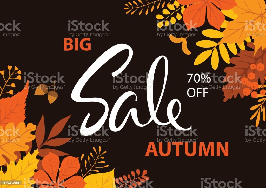 season fall autumn sale background vector art illustration