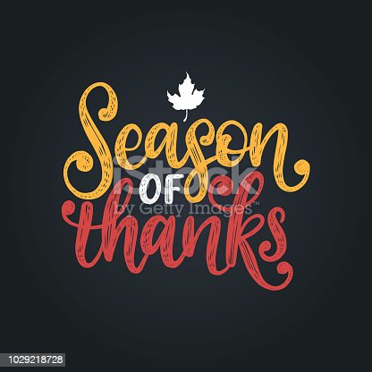 istock Season Of Thanks,hand lettering. Vector illustration with maple leaf for Thanksgiving invitation,greeting card template. 1029218728