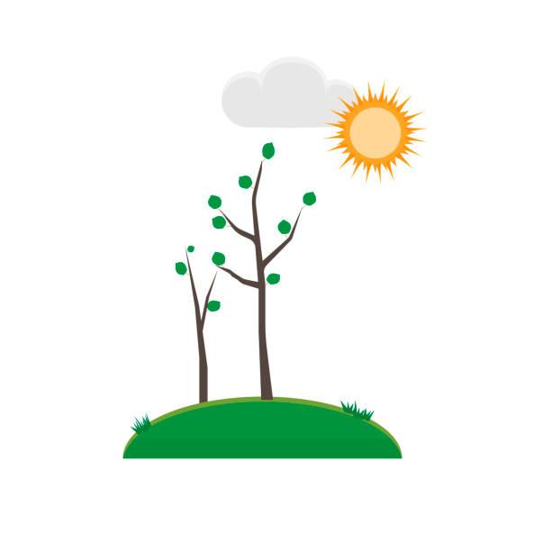 illustrazioni stock, clip art, cartoni animati e icone di tendenza di season. spring - mockup outdoor rain