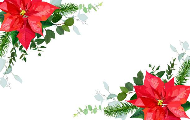 stockillustraties, clipart, cartoons en iconen met seizoensgebonden hoek floral frame met gemengde boeketten van rode poinsetti - kerstster