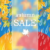 Autumn banner with raindrops and  umbrellas and leaves of maple .Autumn sale