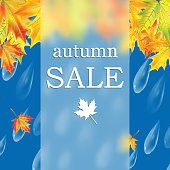 Autumn banner with raindrops and  leaves of maple.Autumn sale