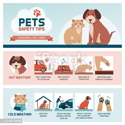 istock Seasonal pet safety tips 1024810408