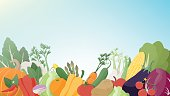 Seasonal fresh vegetables on a sunny sky background, healthy eating, agriculture and vegan food concept