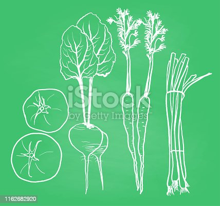 Vegetables sketch illustration with tomatoes, beets, carrots and green onions