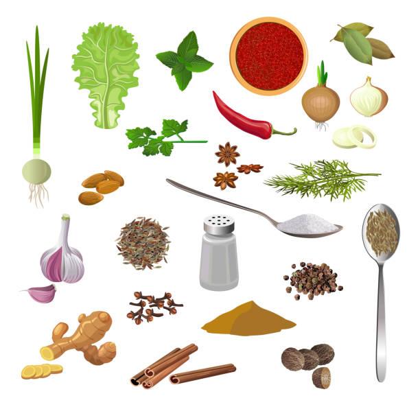Seasonings, herbs and spices Set of various seasonings, herbs and spices on a white background. Vector illustration salt seasoning stock illustrations