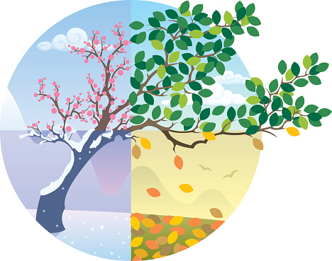 Seasons Cycle Stock Illustration - Download Image Now