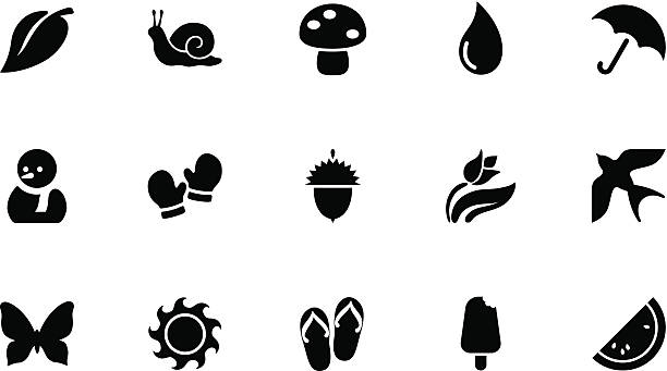 seasons icons . simple black - snail stock illustrations