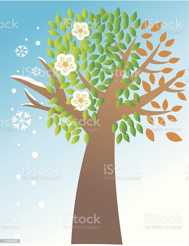 Seasons Tree C royalty-free seasons tree c stock vector art & more images of 2010