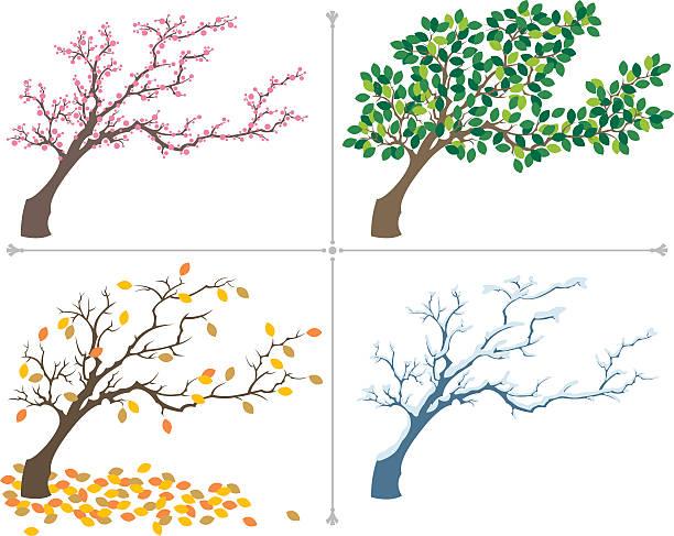"""seasons"" - winterruhe stock-grafiken, -clipart, -cartoons und -symbole"