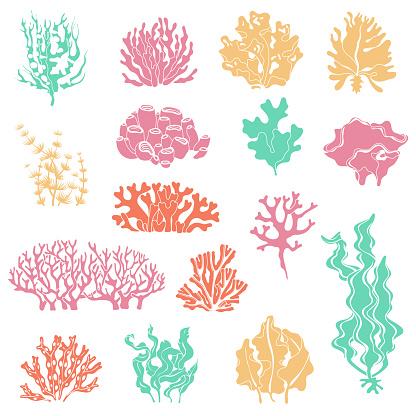 Seaweed and coral silhouettes. Ocean reef corals, underwater marine plants and aquariums kelp. Deep water seaweed