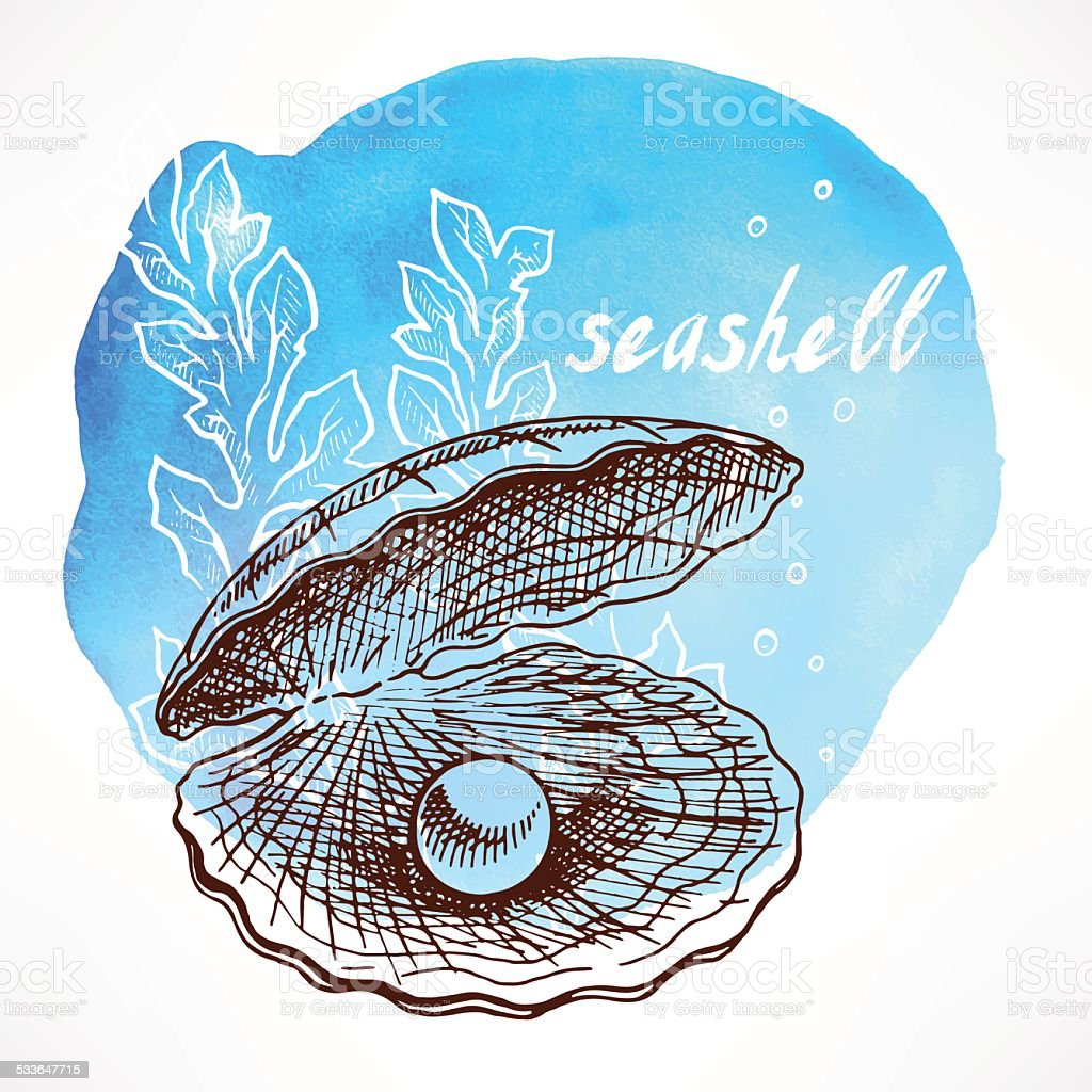 seaweed and shell with pearl vector art illustration