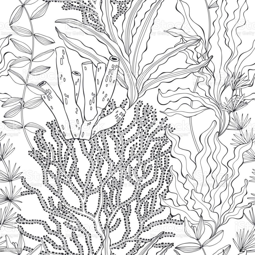 Ilustración De Algas Marinas Patrón Vectorial Sin Costuras