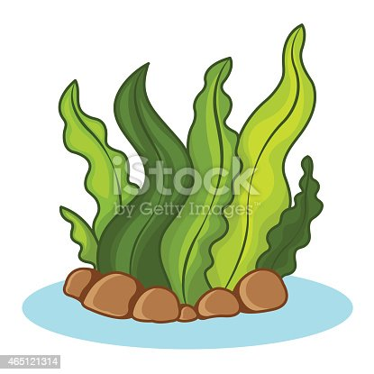 Cartoon Seaweed Clipart Seaweed Stock Vector A...