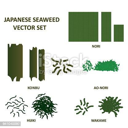 Seaweed vector set. Japanese wakame, nori, hijiku, konbu and ao nori algae food. Vector. eps10.