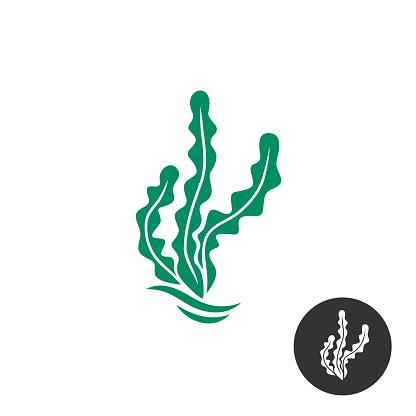Seaweed vector symbol template. One black color monochrome version